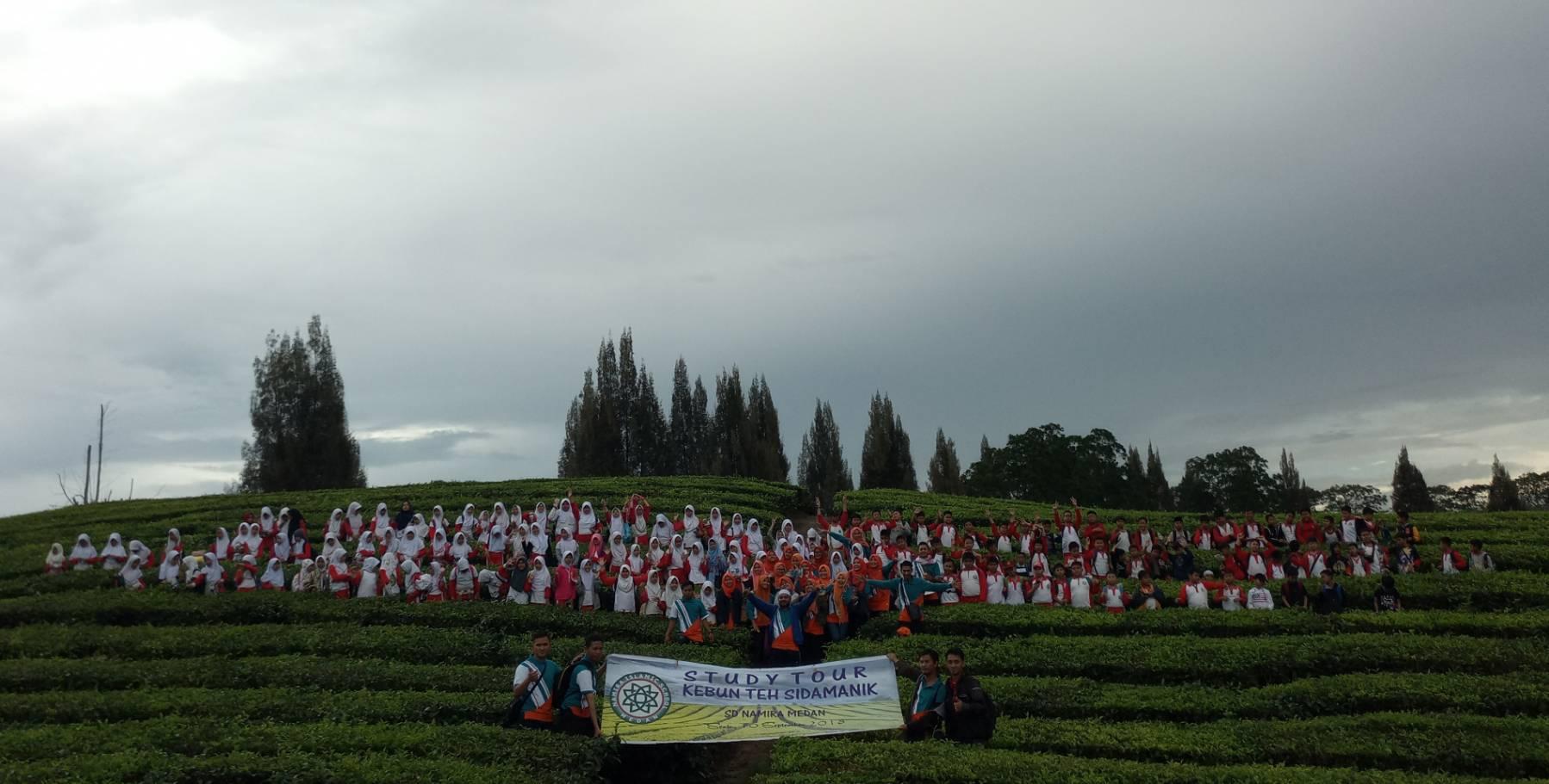 Kegiatan Study Tour Siswa/I Ke Kebun Teh Sidamanik Mbah Butong Kelas 4, 5, dan 6 SDS Namira